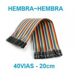 CABLES JUMPER 40 VIAS HEMBRA - HEMBRA 20CM